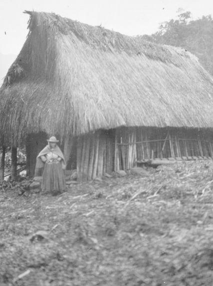 Habitation quichua