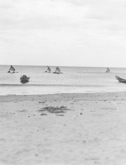 Petite flotille de pêche