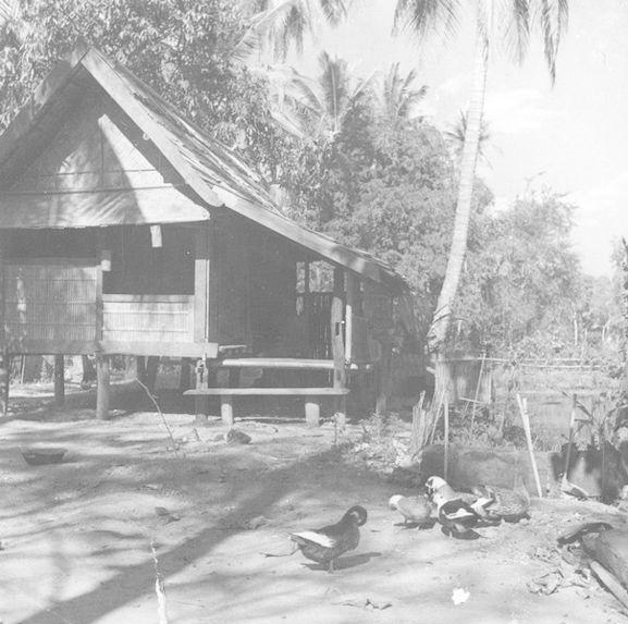Habitation laotienne
