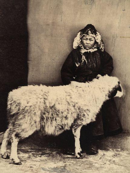 Berger avec un mouton