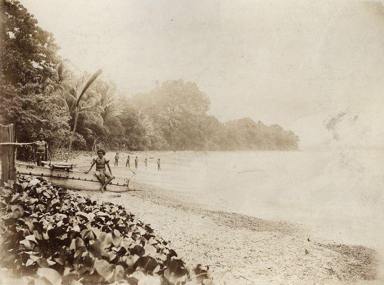 Vue rive de la Baie d'Astrolabe