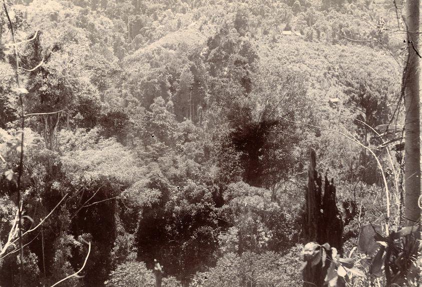 Vallée de la Chintroc près de Sunjei Djo