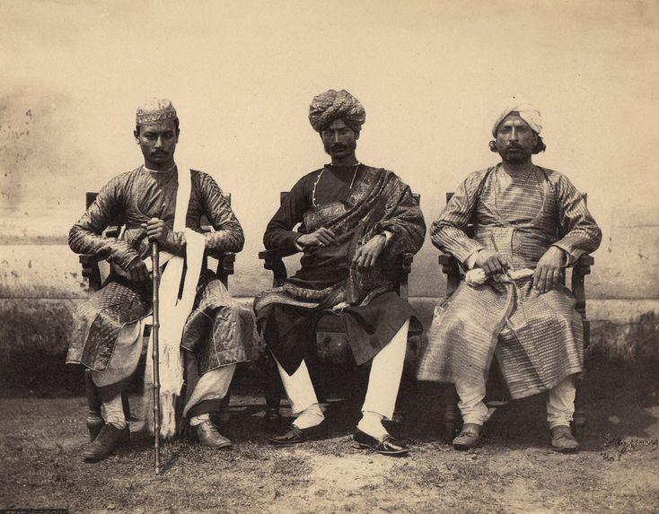 Babous du Bengale