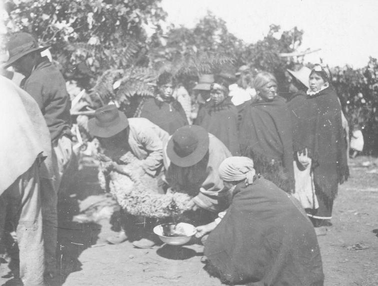 Sacrifice des victimes pendant le Nquillatun