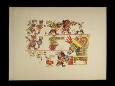 Codex Maya