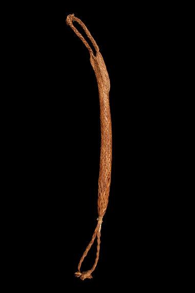 Couleuvre à manioc