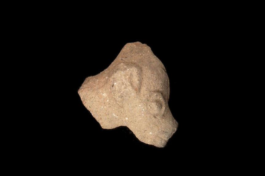 Figurine zoomorphe (fragment)