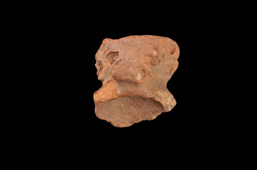 Tête zoomorphe (fragment)
