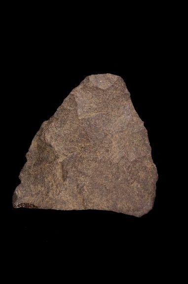 Pointe bifaciale (fragment)