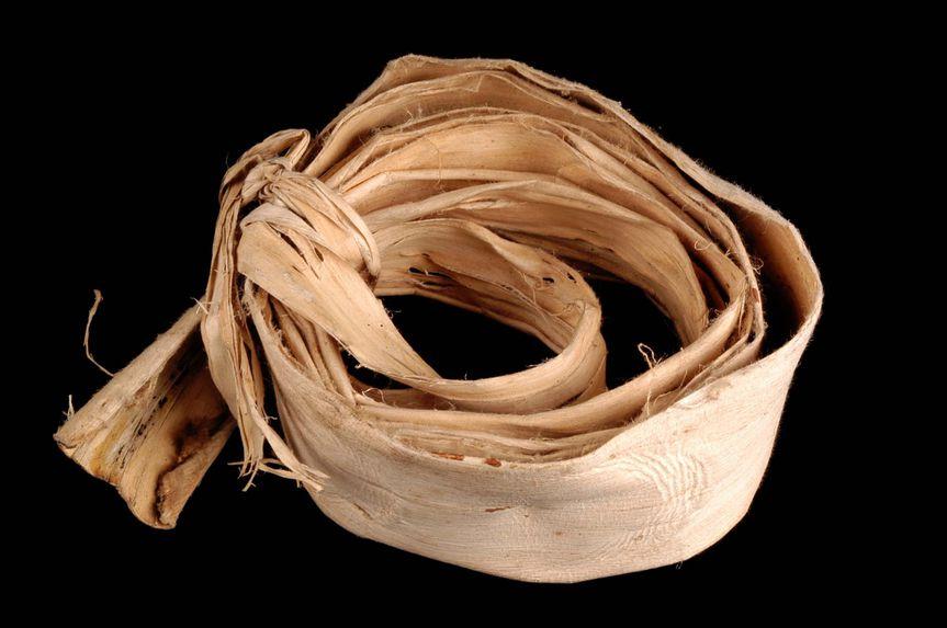 Rouleau d'écorce