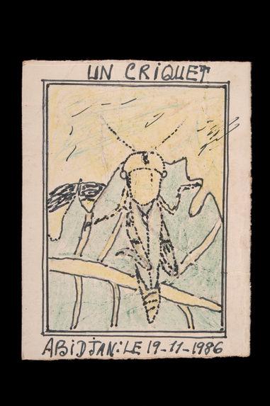 Dessin : Un criquet