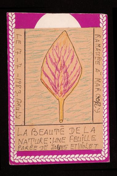 Dessin : La beauté de la nature : une feuille parée de jaune et violet ramassée à Marcory