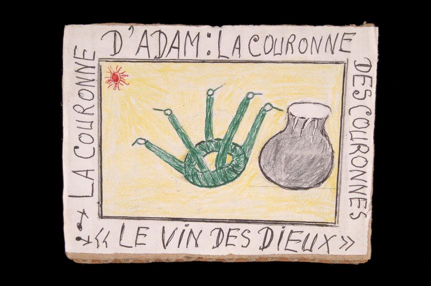 """Dessin : La couronne d'Adam : la couronne des couronnes """"le vin des dieux&quot"""