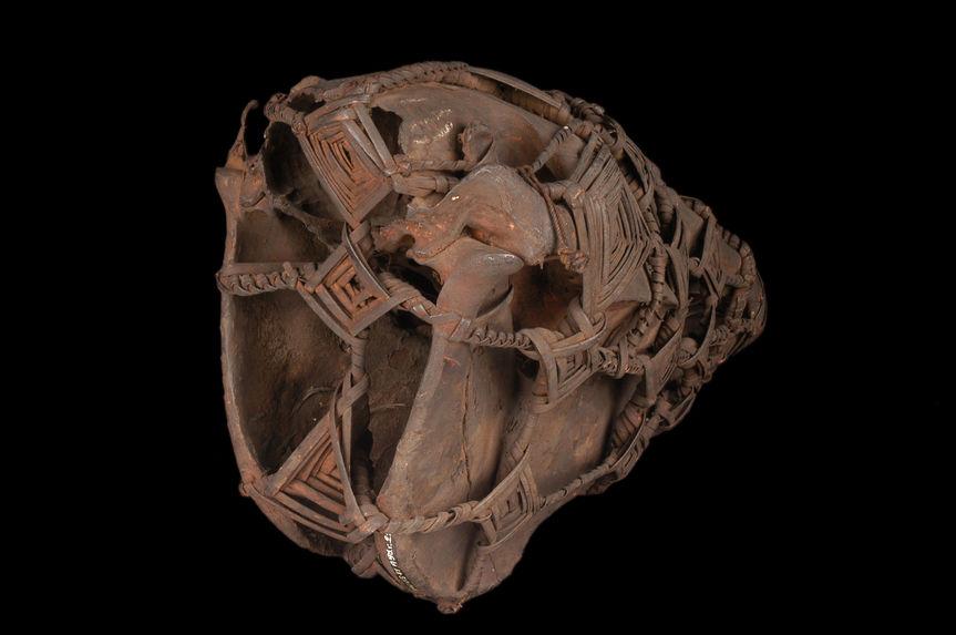 Crâne de cheval