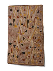 Rivières et palmiers nains crées par Yurlunggur