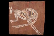Kangourou femelle