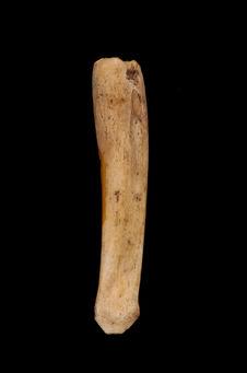 Objet en os en cours de fabrication