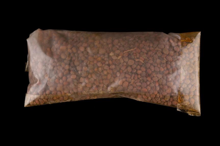 Echantillon de graines