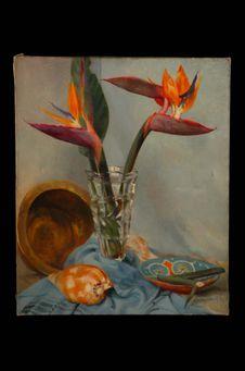 Fleurs exotiques : Les strelizias