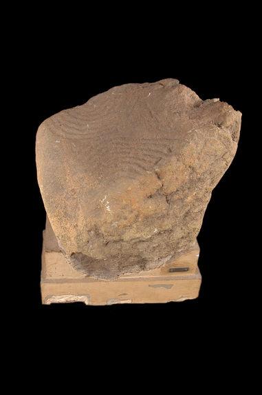 Pétroglyphe