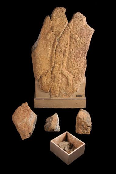 Pétroglyphe, fragments lithiques (4)