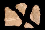 Echantillons de crépis