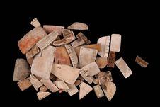 Fragments de coquillages