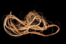 Echantillon de fibre