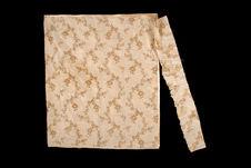 Costume de femme : pan de jupe