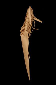 Insecte en feuille de paillotte