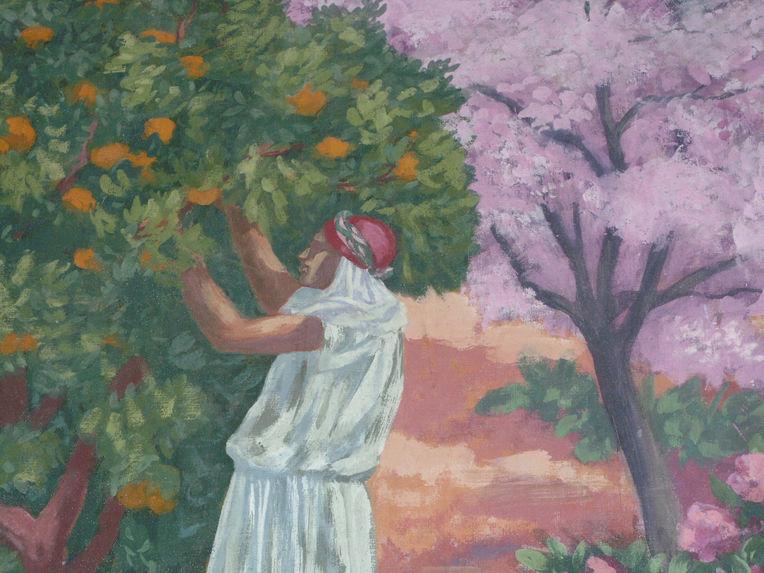 Cueillette des oranges