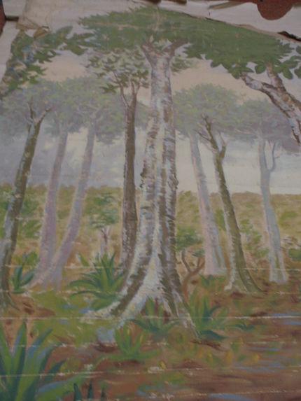 Diorama : Paysage, désert et végétation I