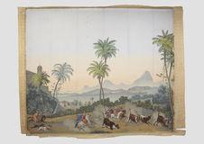 Papier peint panoramique : Vue du Brésil
