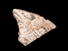 Vase (fragment )