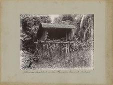 Haus der Buschleute
