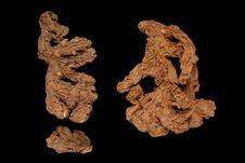 Rhizomes de gingembre