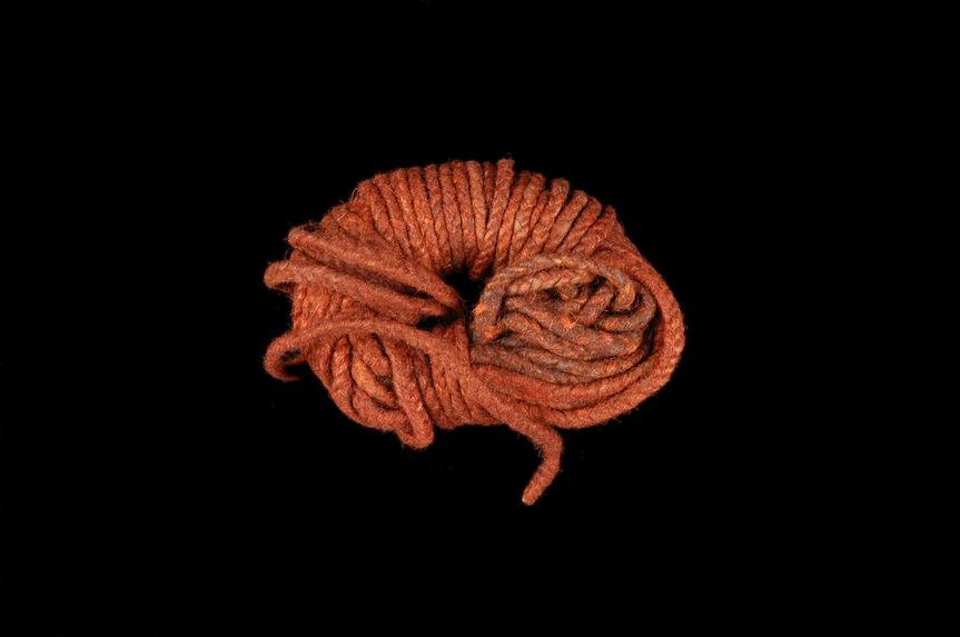 Cordonnet de poils de roussette