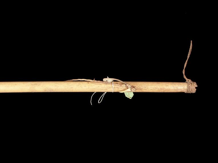 Gaule à pêcher avec ligne et hameçon (modèle)