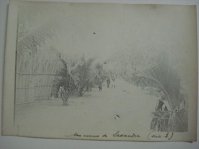 Une avenue de Sassandra
