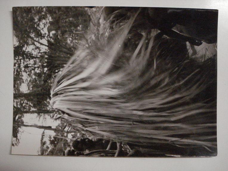 Telle une toupie, Edzingui, esprit de la forêt, tourne sur lui-même dans un tourbillon de rubans, pygmées Bangombé