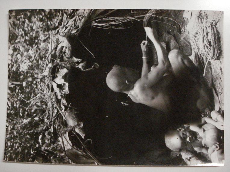 La vieille Lolé, une pygmée prépare des fibres