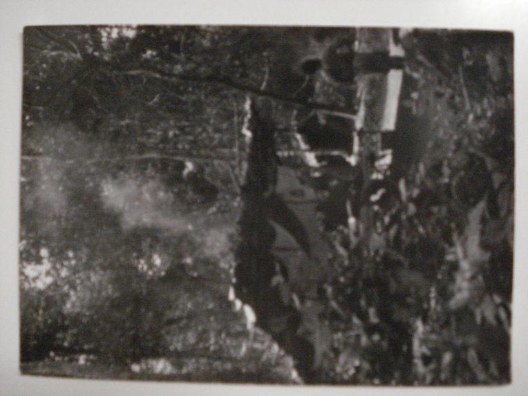 Abri des explorateurs à quelques mètres des huttes des Pygmées Balenzelé