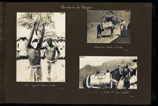 Cheval du sultan à Zinder