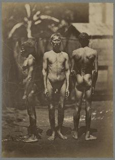 Macoua, Arabe indien, nègre créole de la Réunion