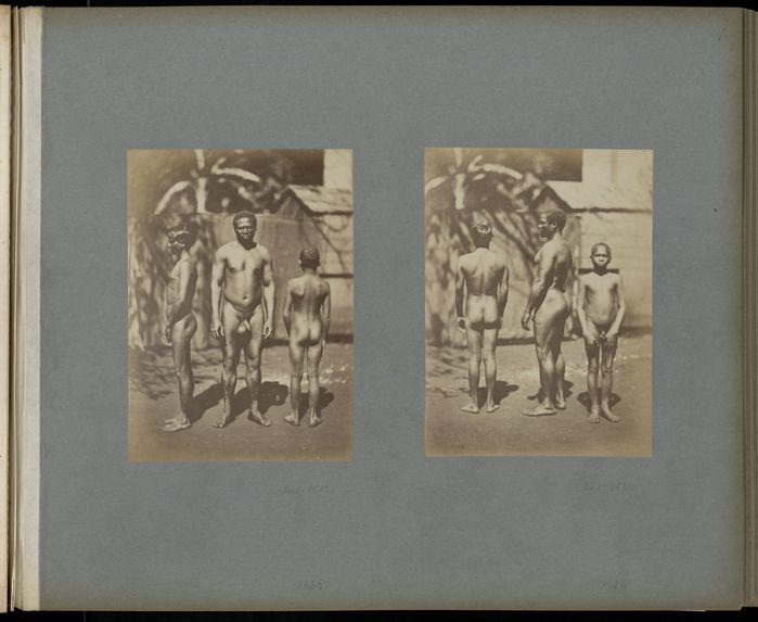Malgache, nègre créole de la Réunion, Indien.