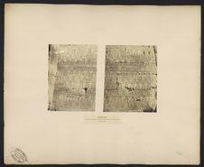 Karnak, liste des peuples vaincus par Toutmès III