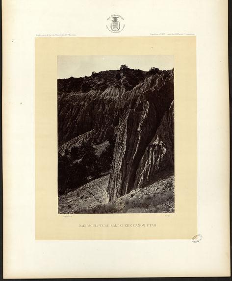 Rain sculpture Salt Creek Canon, Utah