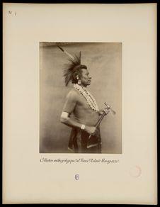 Peaux Rouges [Portrait d'Hard Chief]