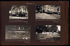 Une visite aux plantations de M. de Lamothe