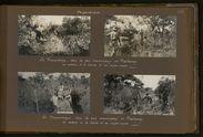 Dans les bois marécageux de Masibango on avance à la hache et au coupe-coupe